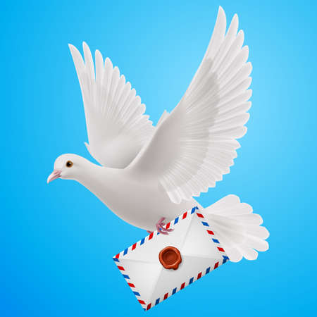 mailer: Pigeon fly with letter in blue sky