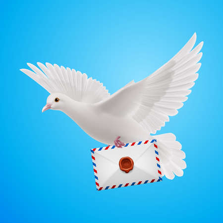 mailer: Carrier fly with letter in beak on blue background