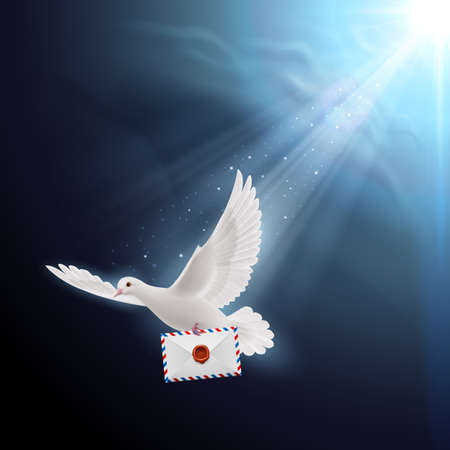 beak: Pigeon fly with letter in beak on dark background