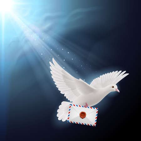 mailer: Pigeon flying with letters in beak on sunlight Illustration