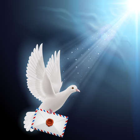 mailer: Pigeon fly with mail  into sunlight Illustration