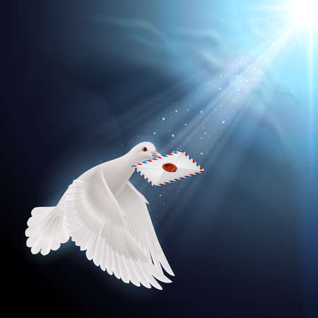 Pigeon flying with letter in beak in sunlight Vector Illustration