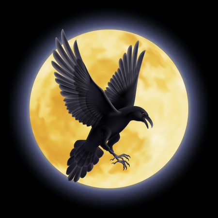 Black crow soars on the background of a full moon night Vector