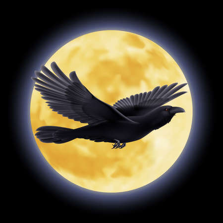 Black crow flying on the background of a moon Vector