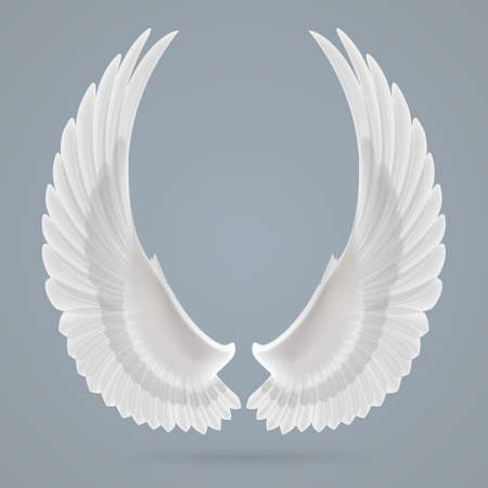 angel silhouette: Inspiring white wings drawn separately on a gray background