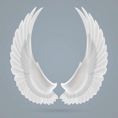 Inspirierende weißen Flügeln getrennt auf einem grauen Hintergrund gezeichnet