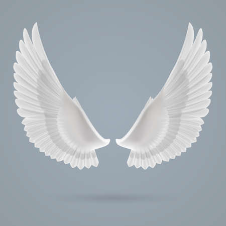 angel silhouette: Inspiring white wings up drawn separately on a gray background