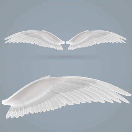 creative force: Inspiring wings drawn separately on  gray background.