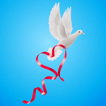 ripply: White dove with red ribbon with the blue background Illustration