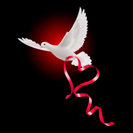 White dove with red ribbon and the dark background. Illustration