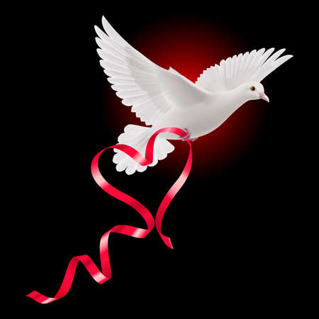 White dove with red ribbon on the dark background Vector