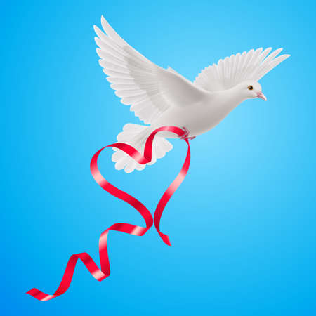 White dove with red ribbon in the blue background