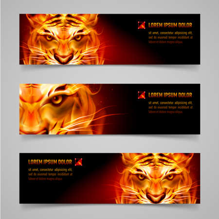 Set banners. Fire tiger message. Black background Vector