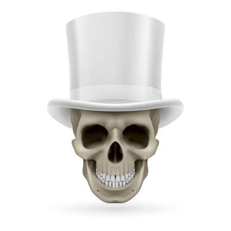 chapeau blanc: Cr�ne humain portant un chapeau haut de forme blanc.