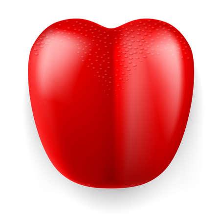 lingual: Large red plastic tongue on white background. Illustration