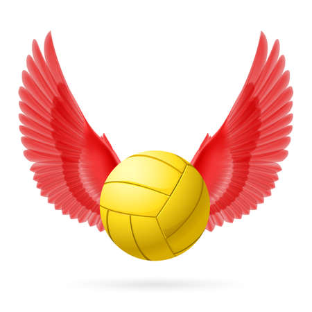 volley ball: Realistic volley ball with red wings emblem