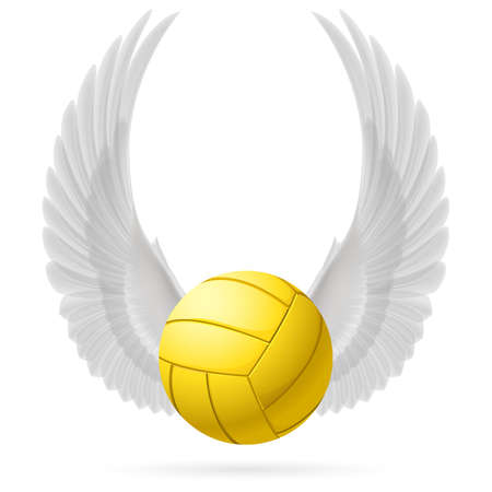 volley ball: Realistic volley ball with raised up white wings emblem Illustration