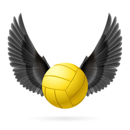 volley ball: Realistic volley ball with black wings emblem
