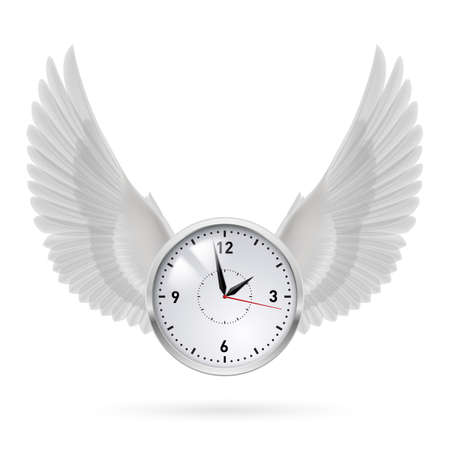 time fly: White clock and white wings. Swing. Time.