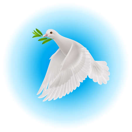 White dove flying with green branch in its beak over blue background