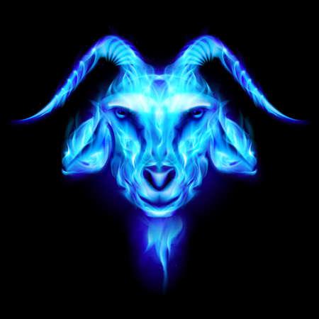 Symbol 2015 blue goat on a black background Vector