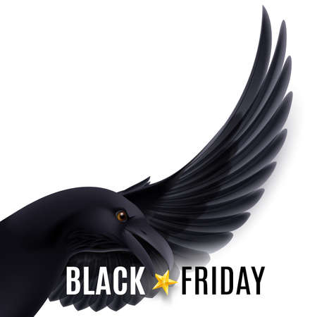 Black Friday discounts, increasing consumer growth. Fly  black raven