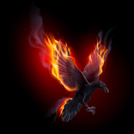 Black raven flying in the flame on the black background
