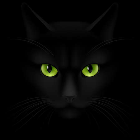 Black cat with green eyes looking out of the darkness Ilustração