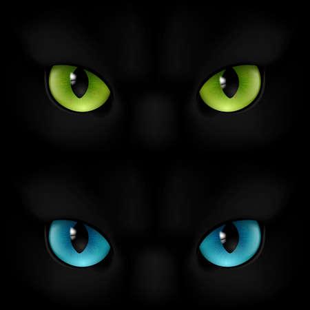 ojos negros: Gatos verdes y azules ojos sobre un fondo negro