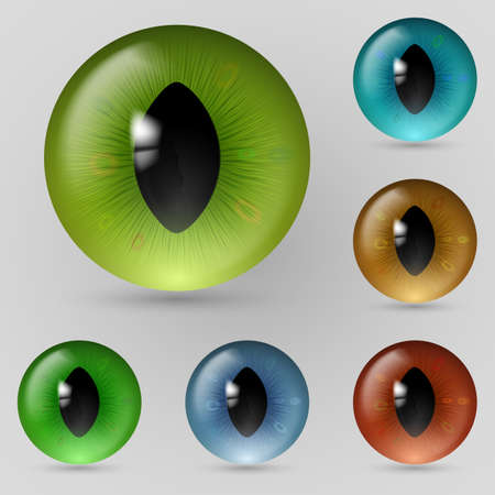 Set of eyes reptiles, cats and dragon Vector