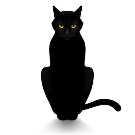 black eyes: Black cat isolated on a white background Illustration