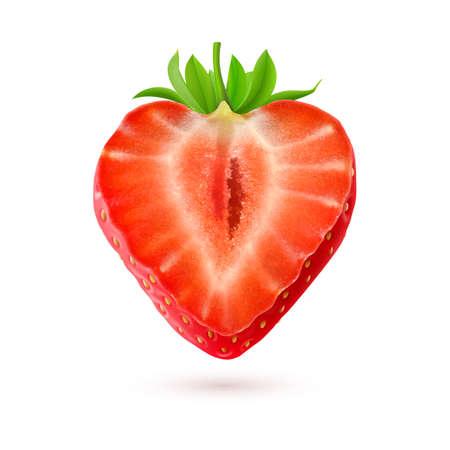 イチゴ。白い背景に分離されたベリーの半分  イラスト・ベクター素材