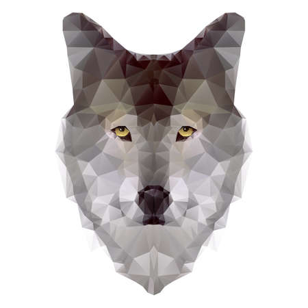 Head of wolf triangle isolated on white background