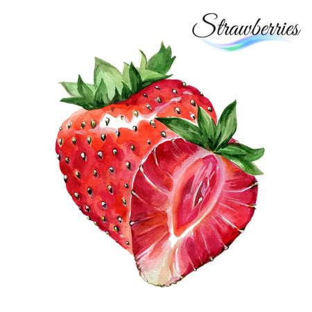 Aquarel fruit aardbeien op een witte achtergrond Stock Illustratie