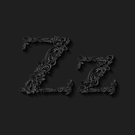 lower case: Handsomely decorated letter z in upper and lower case on black Illustration
