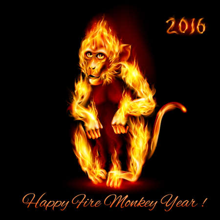 monkey silhouette: Year Of The Red Fire Monkey. Greeting Card on black background Illustration