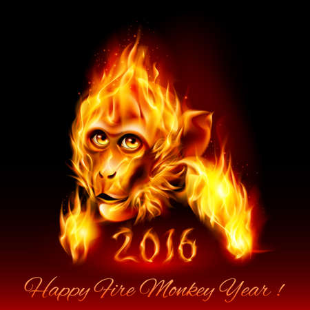 monkey silhouette: Head of fire Monkey. New Years Banner design on black Illustration
