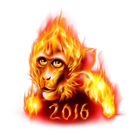 fogatas: Cabeza del mono rojo del fuego. Dise�o de A�o Nuevo Banner en blanco Foto de archivo