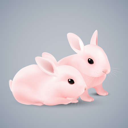 fun background: Two Cute Cartoon Bunnies of Pink Color