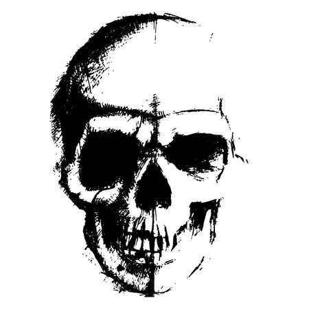 tete de mort: Crâne élément d'esquisse isolé sur fond blanc