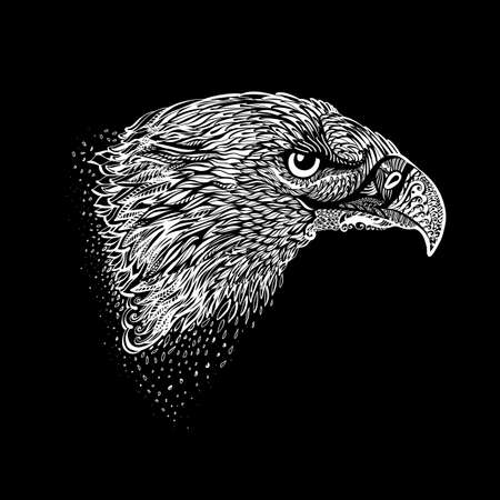 tatouage oiseau: Head Stylisé de Eagle. Hand Drawn noir et blanc de griffonnage Illustration