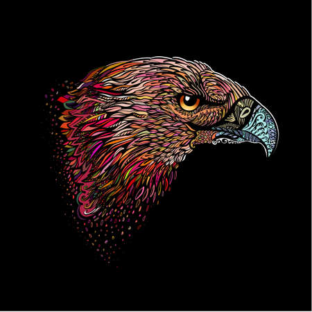 Stylized Head of Eagle. Hand Drawn Doodle Illustration in Color on Black