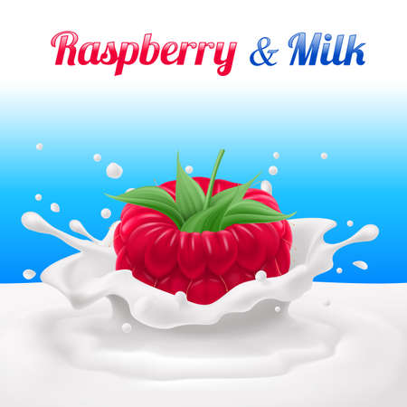 dipped: Raspberry Dipped in Milk with Splashes. Drop and Sweet, Food and Fresh and Liquid