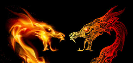 Two Dragon Heads in Fire and Transperent Ornaments