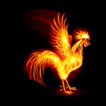 fire symbol: Silhouette of Red Cock. Fire Rooster Symbol of the New Year by Chinese Calenda