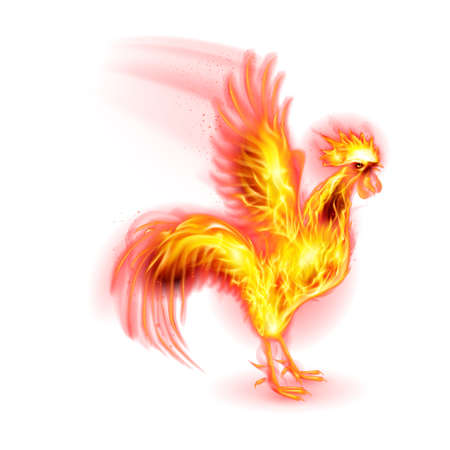 fire symbol: Silhouette of Red Rooster. Fire Rooster Symbol of the New Year by Chinese Calenda on White