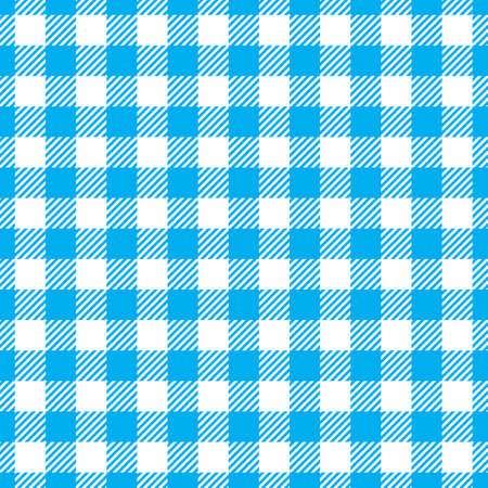 Seamless Blue White Traditional Gingham Pattern Fabric Texture