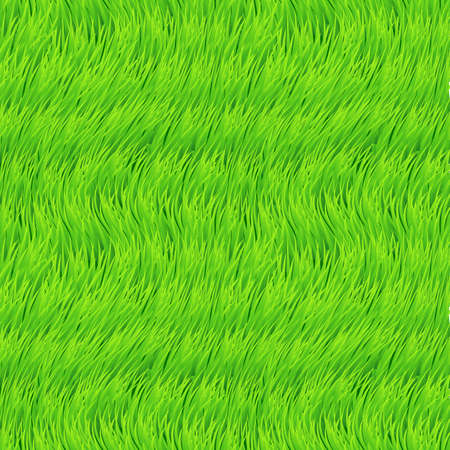Fresh Grass Seamless. Beautiful Fresh Lawn Grass Texture. Wave Design