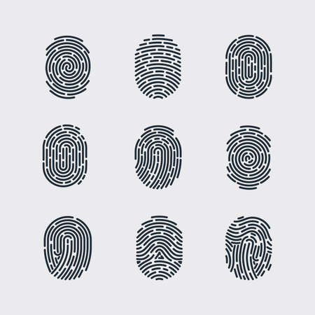fingermark: Types of Fingerprint Patterns for Identity Person Security ID on Gray for Design