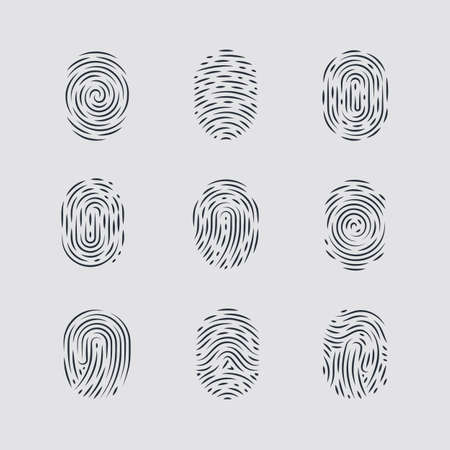 fingermark: Abstract Types of Fingerprint Patterns for Identity Person Security ID on Gray Background for Design